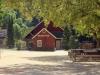 Redwoods-0921-01